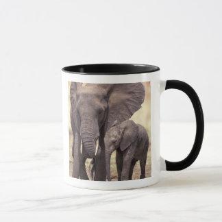 Mug L'Afrique, Tanzanie, parc national de Tarangire. 2