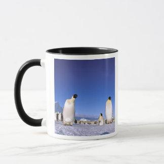 Mug L'Antarctique, péninsule antarctique, mer de