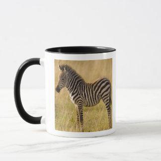 Mug Le jeune raffine le quagga d'Equus de zèbre) dans