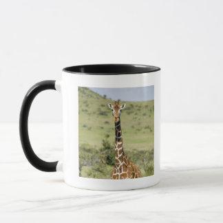 Mug Le Kenya, garde de Lewa, position de girafe de