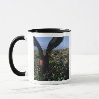Mug L'Equateur, îles de Galapagos, magnifiques