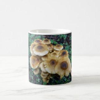 Mug Les champignons géniaux attaquent pour aller avec