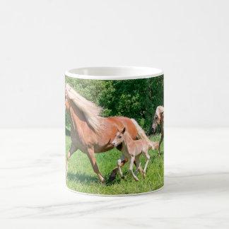 Mug Les chevaux de Haflinger avec les poulains mignons