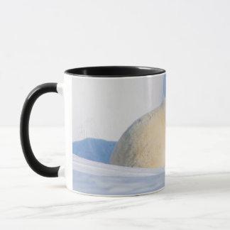 Mug Les Etats-Unis, Alaska, pente du nord, 1002