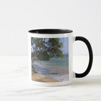 Mug Les Etats-Unis, Hawaï, Kauai, échouent