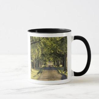 Mug Les Etats-Unis, Kentucky, Lexington. Allée bordée