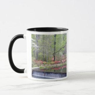 Mug Les Etats-Unis, la Géorgie, montagne de pin. Une