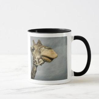 Mug Les Etats-Unis, le Texas, région fossile de faune