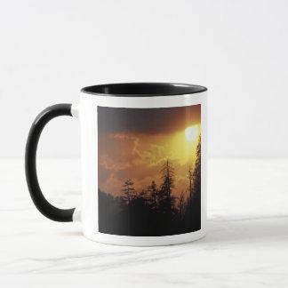 Mug Les Etats-Unis, Tennessee, Great Smoky Mountains