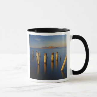 Mug Les Etats-Unis, Utah, grand bassin, Saltair, grand