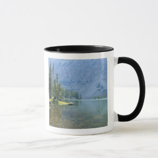 Mug Les Etats-Unis, Utah, réserve forestière d'Ashley,