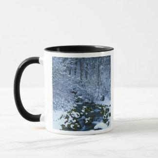 Mug Les Etats-Unis, Utah, réserve forestière de