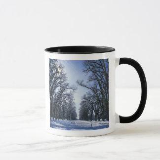 Mug Les Etats-Unis, Utah, Salt Lake City, parc de