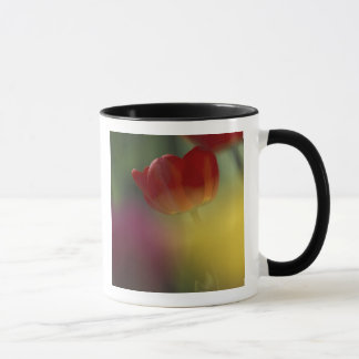 Mug Les Etats-Unis, Utah, tulipes de vallée de