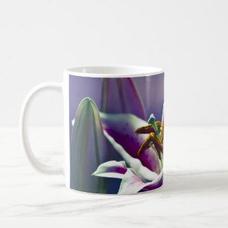 Mug Lis d'astronome