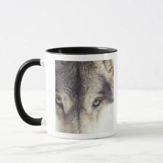Mug Lupus de Canis