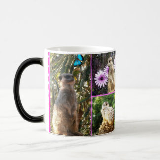 Mug Magique Collage de Meerkat,