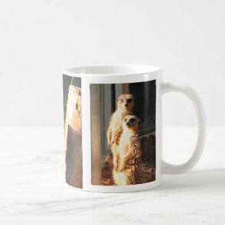 Mug Matin de Meerkat