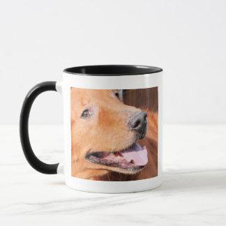 Mug Maximum - golden retriever Photo-5
