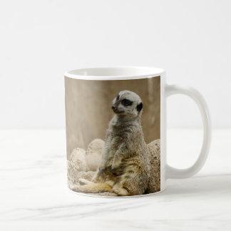 Mug Meerkat