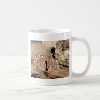 Mug Meerkats