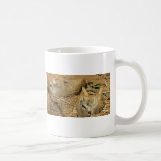 Mug Meerkats adorable