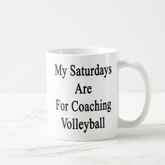 Mug Mon samedi est pour le volleyball de entraînement