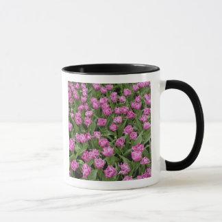 Mug Motif de jardin des tulipes, jardins de Keukenhof,