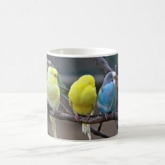 Mug Oiseaux colorés lumineux de perroquets de