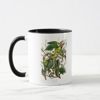 Mug Oiseaux de John Audubon de perroquet de la