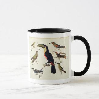 Mug Oiseaux indigènes, y compris le toucan (centre),