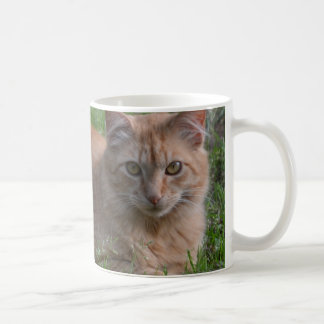 Mug Orange de chat tigré