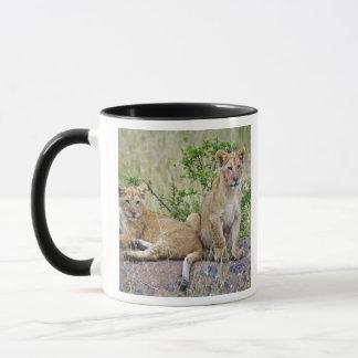 Mug Paires de petits animaux de lion sur la roche,