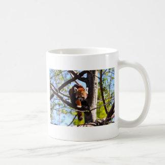 Mug Panda rouge grimpant vers le bas à l'arbre