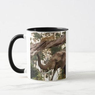 Mug Parfum d'essai d'éléphant (Loxodonta) de léopard