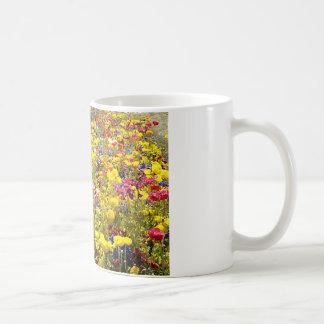 Mug Pavots de californium