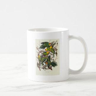 Mug Perroquet de la Caroline - John James Audubon