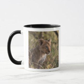 Mug Petit animal de lion (Panthera Lion),
