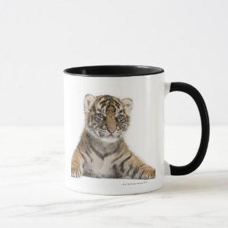 Mug Petit animal de tigre de Sumatran - sumatrae du