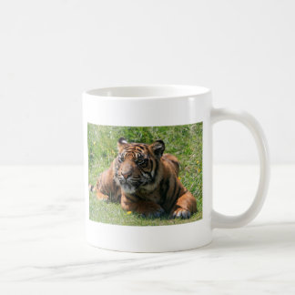 Mug petit animal de tigre, j'aime des tigres de coeur