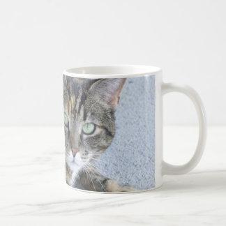 Mug Photo mignonne de chat tigré