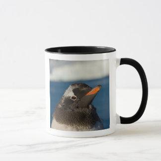 Mug pingouin de gentoo, Pygoscelis Papouasie, poussin