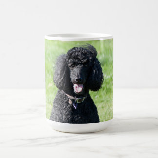 Mug Portrait de photo de noir de chien de caniche
