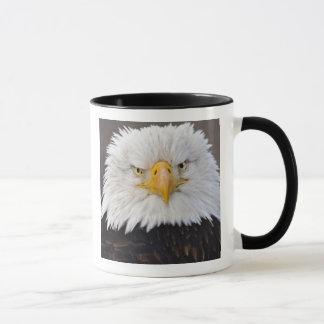 Mug Portrait d'Eagle chauve, Eagle chauve en vol,