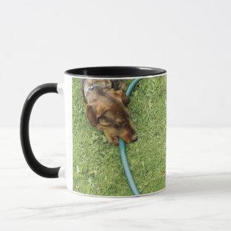 Mug Poursuivez mordre sur le tuyau sur l'herbe et le