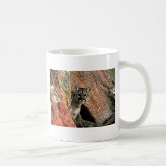 Mug Puma - photo de puma