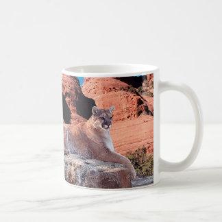 Mug Puma se reposant sur la roche -