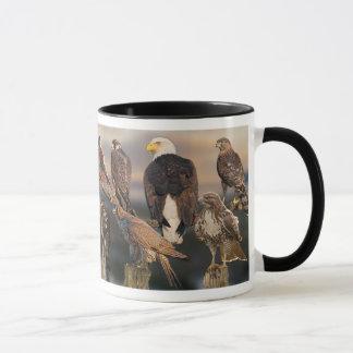 Mug Raptors journalier de la côte ouest