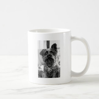 Mug Schnauzer miniature
