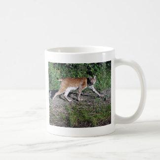 Mug Sibérien Lynx
